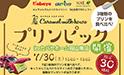 カバヤホーム岡山南店にて≪限定30組様≫プリンピック開催!
